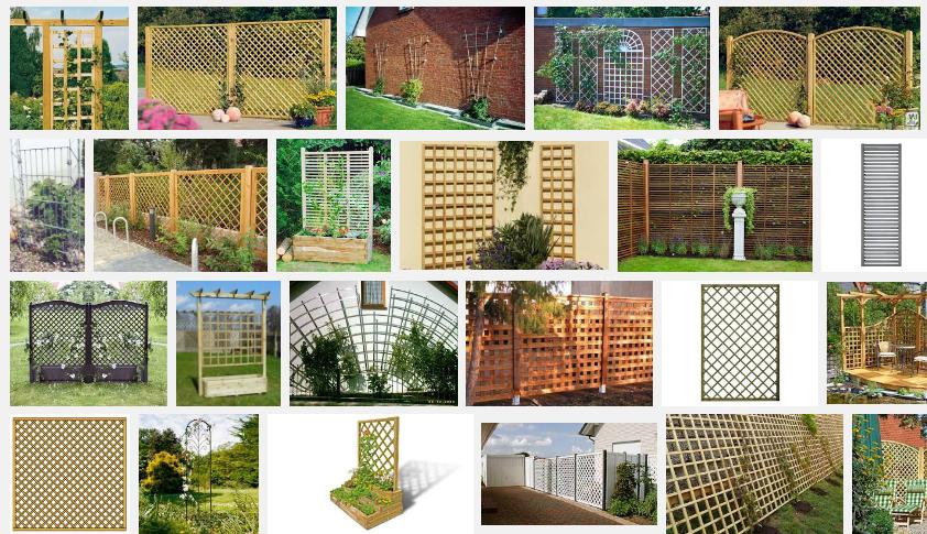 Rankgitter für einjährige Kletterpflanzen Quelle: google.de/images