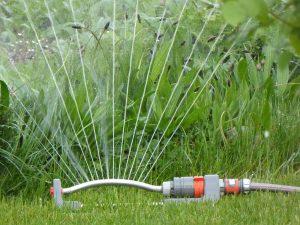 Bewässern Sie den Garten richtig