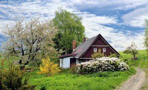 5 Möglichkeiten, um Ihren Garten gesund zu halten